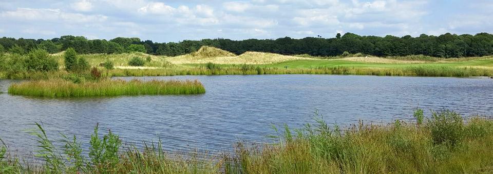 golfanlage6-golfclub-luetetsburg-header